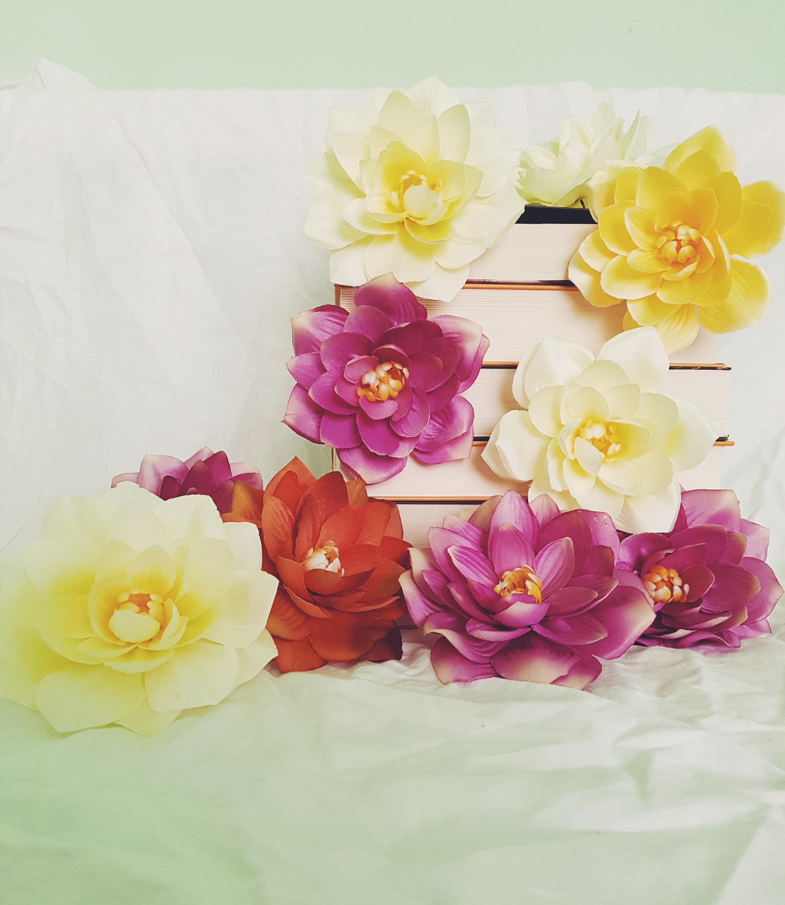 5 cărți care mi-au făcut vara mai frumoasă